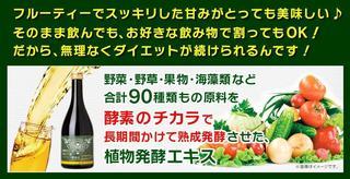 浜田ブリトニーのベジライフ酵素液は本物か?
